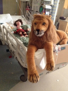 Neva_lion_ICU
